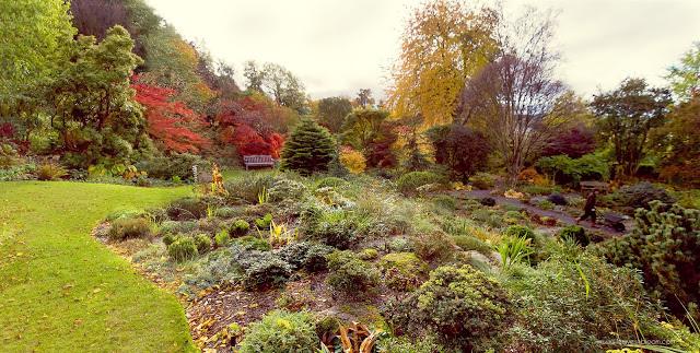 Branklyn Garden autumn foliage colours